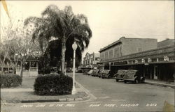 South Side of the Mall Postcard