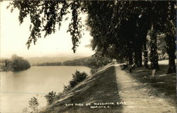 City Park on Muskingum River