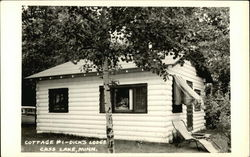 Dick's Lodge - Cottage #1
