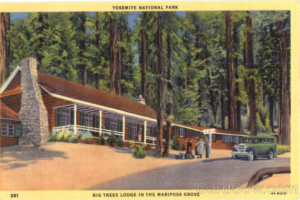 Big Trees Lodge Yosemite National Park California