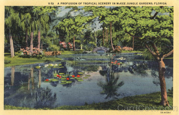 A Profusion Of Tropical Scenery In McKee Jungle Gardens Scenic Florida