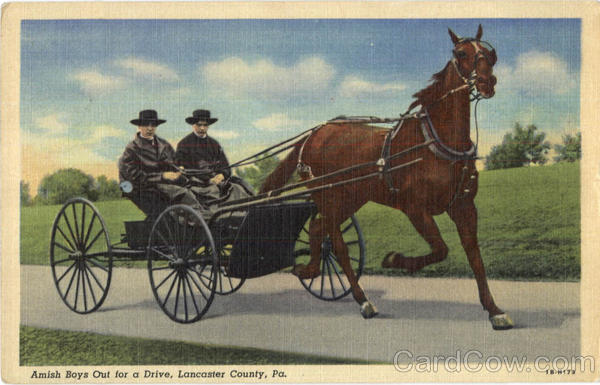 Amish Boys Out For A Drive Lancaster County Pennsylvania
