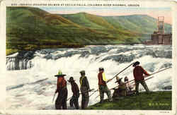 Indians Spearing Salmon At Celilo Falls