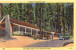 Big Trees Lodge