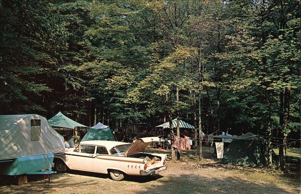 Camping in the Allegany State Park New York