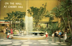 Cherry Hill Shopping Center - The Mall