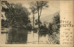 Bear Camp River