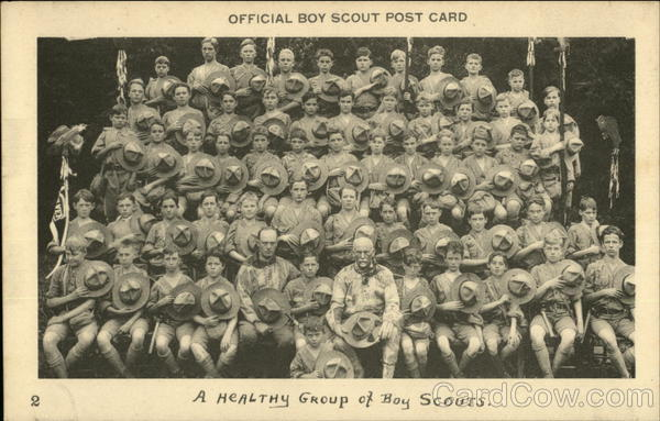 A Healthy Group of Boy Scouts