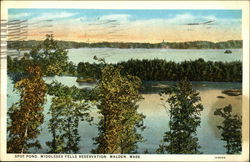 Spot Pond, Middlesex Fells Reservation