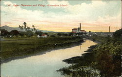Sugar Plantation and Village, Northwestern Hawaiian Islands