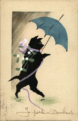 Cat Walking Upright and Carrying an Open Umbrella
