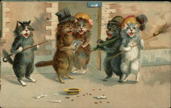 Cats Singing and Performing on the Street for Money