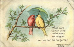 Two Birds Sharing Umbrella