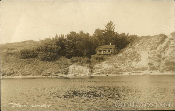 Pine Pocket and Cabin on Lake White Lake Michigan