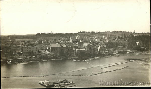 Aerial View of Keewatin Canada Ontario