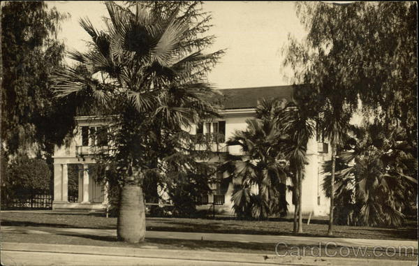 Large Palm Trees in Front of a House Los Angeles California
