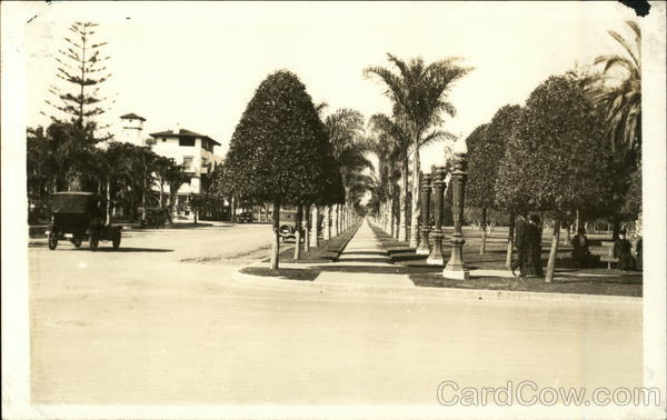 Early Los Angeles with unpaved streets and palm-lined sidewalks California