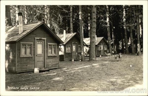 Yosemite lodge cabins with deer california postcard for Cabins in yosemite