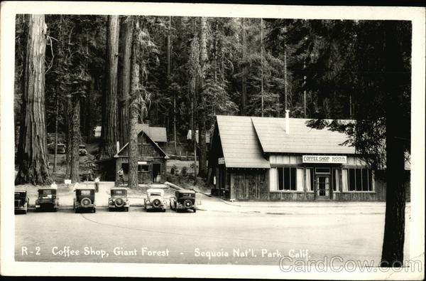 Coffee Shop, Giant Forest Sequoia & Kings Canyon National Parks