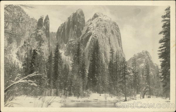 Snowy Mountains and Trees in Yosemite California