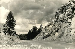 Rocks and Pines on Highway 66