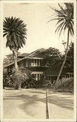 Tall Palm Trees in Front of a House