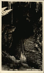 Staircase in Lava Tube