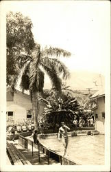 Men Bathing At An Hawaiian Swimming Pool