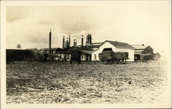 Sugar mill photo