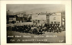 Mule Team Trains Leaving for Ft. Washakie - Lauder