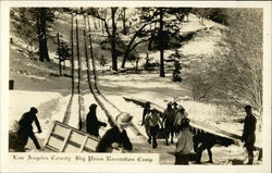 Sledding and Skiing at Los Angeles County Big Pines Recreation Camp