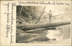 Man on a Fallen Log Bridge