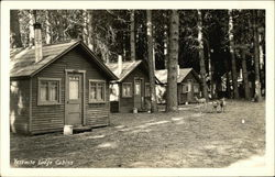 Yosemite Lodge Cabins with Deer