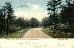Turtle Pond, Road in Stony Brook Reservation