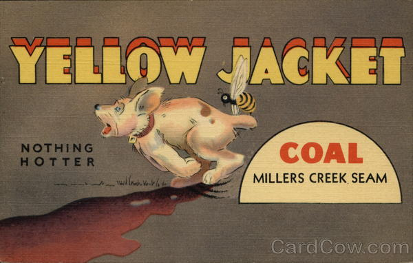 Yellow Jacket Coal, Millers Creek Seam, Nothing Hotter