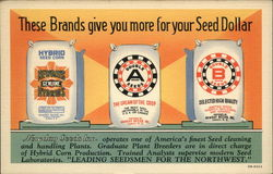 Newday Seeds Inc