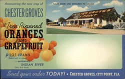 Chester Groves Oranges and Grapefruit