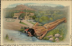 Chief Health Water at Richardson SPrings - in the Mountains Near Chico, Butte County, California