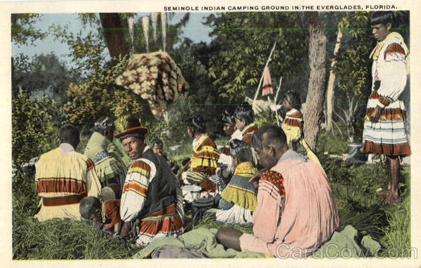 Seminole Indian Camping Ground In The Everglades Native Americana