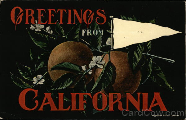 Illustration - Oranges, General Greetings California