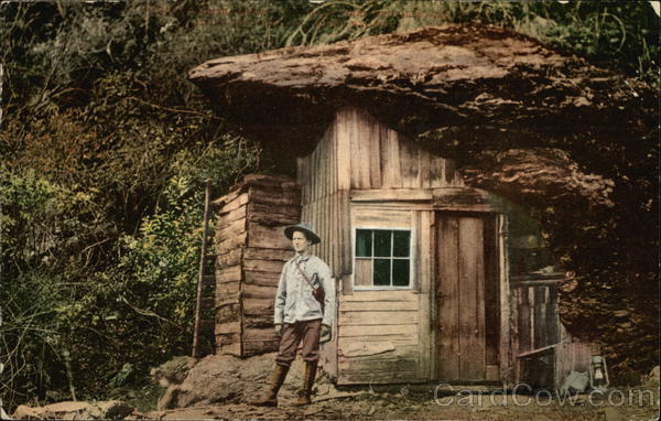 Shack Home Built Into Downed Tree California