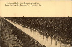 Irrigating Kaffir Corn, Demonstration Farm, Texas Land & Development Co.