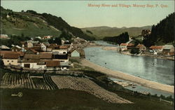 Murray River and Village Postcard