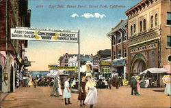 East Side, Ocean Front Postcard