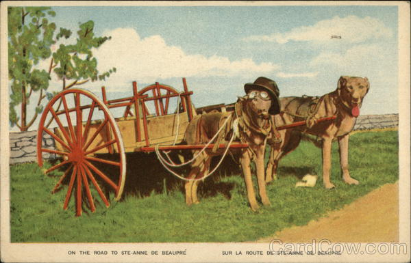Dog Cart - On the Road to Ste-Anne De Beaupre Canada