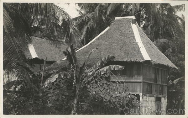 Housing near Palm Trees Philippines Southeast Asia