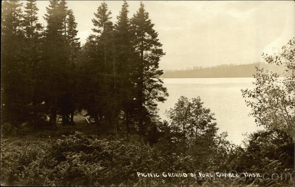 Picnic Ground, Water Port Gamble Washington