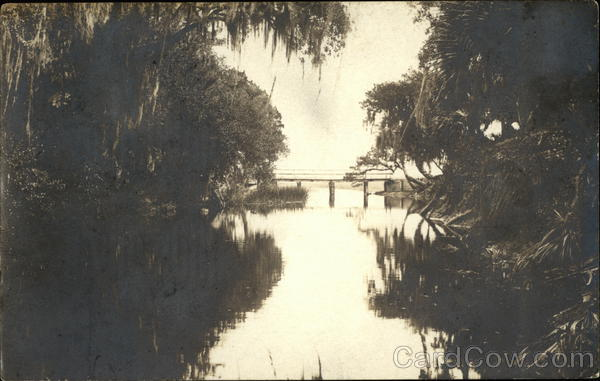 Scenic Water with Trees and Bridge, Hawks Park Edgewater Florida