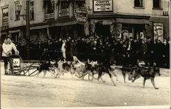 Sled Dogs Running in a Race through Town