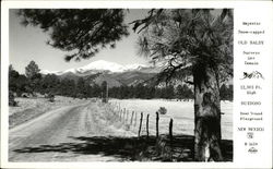 Snow-Capped Old Baldy Mountain Postcard